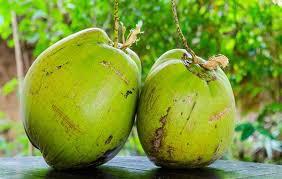 cocos frecos