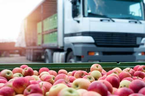 camion que transporta cajas de manzanas